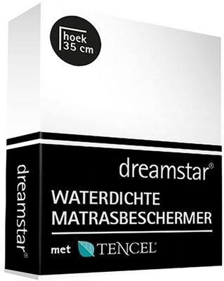 Dreamstar Waterdichte Matrasbeschermer Met Tencel 19679