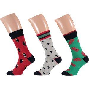 Apollo Heren Sokken 3-Pack Rood / Groen 22909